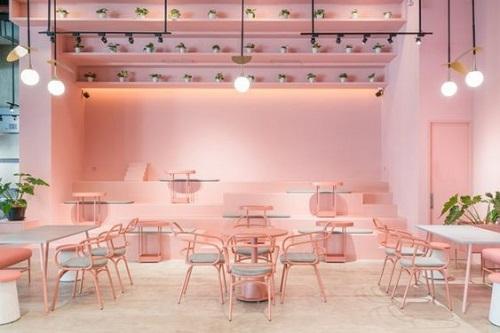 Gạch lát màu hồng nhạt mang đến cho không gian phòng khách vẻ đẹp thanh lịch, tinh tế, trang nhã mà không hề đơn điệu, nhàm chán