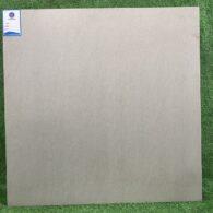 Gạch 60×60 Đá Mờ Giá Rẻ Màu Xám Nhạt Viglacera 604