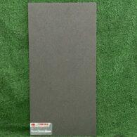 Gạch Giả Bê Tông 30×60 Taicera G63918