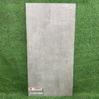 Gạch Giả Xi Măng 30×60 Mờ Taicera G63928