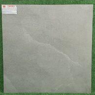 Gạch Giả Xi Măng Nhám 60×60 Taicera G6878